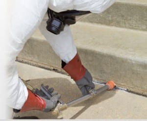ant prevention Vancouver, BC - Westside Pest Control