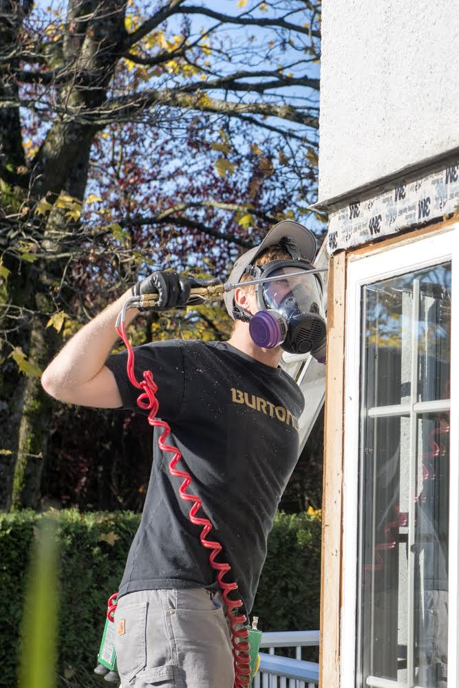 removing carpenter ant colony in vancouver bc - Westside Pest Control