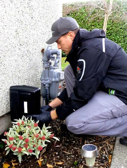 Rodent Control Metro Vancouver, BC - Westside Pest Control