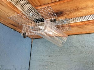 One-way bat door - Westside Pest Control