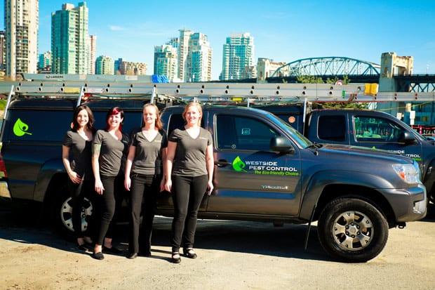 Pest Control Metro Vancouver, BC - Westside Pest Control