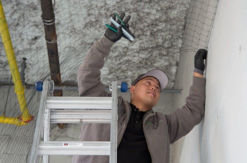 Jester installing Bird netting