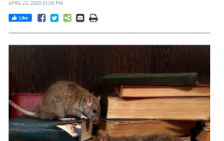 Rodent problems In North Vancouver - Westside Pest Control reports