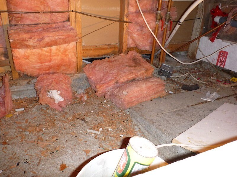 Crawlspace Before Pest Cleanup, Vancouver - Westside Pest Control